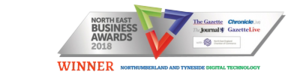 NE Biz Awards 18 Winner